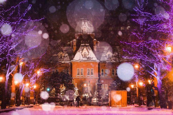 雪化粧した札幌の街並