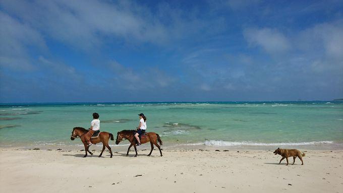 久米島の文化に触れる体験
