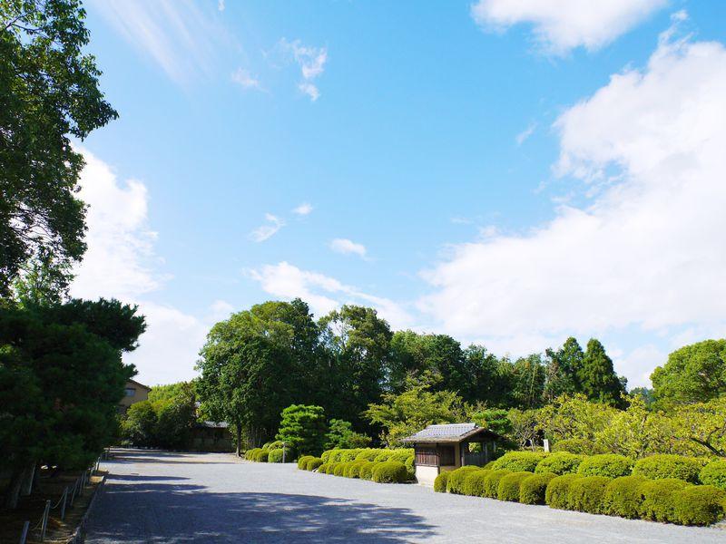 京都市中心部から随心院までのアクセス