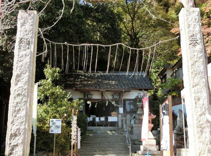 関西の最強恋愛パワースポット「氷室神社」