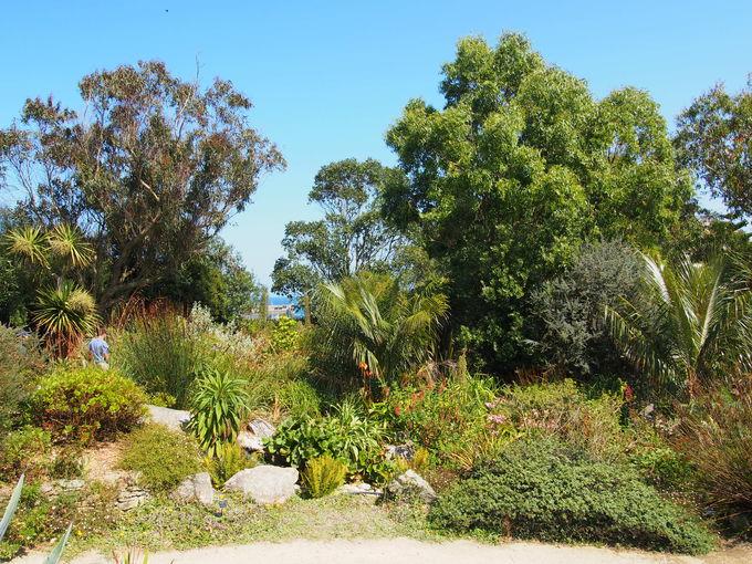 大パノラマと花々が楽しめるロスコフエキゾチック植物園!