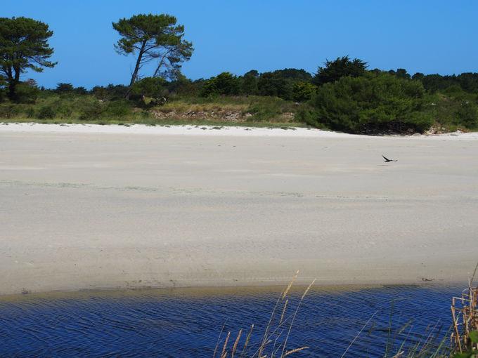 まるでカリブ海!?紺碧の海と白い砂のビーチにびっくり!