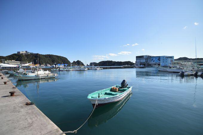 温暖な港町を散策!足湯でほっこり&生マグロで腹ごしらえ