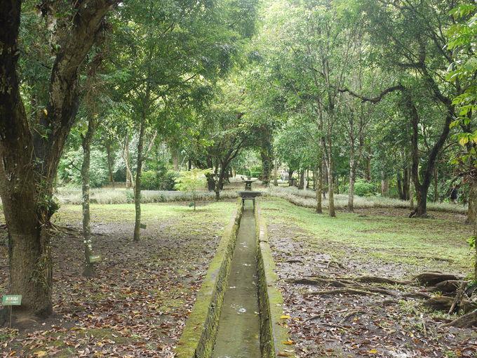 「タマン・アユン寺院」が世界遺産に登録されている理由
