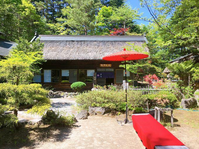 札幌とは思えない自然の中で十割蕎麦を!「狸庵」