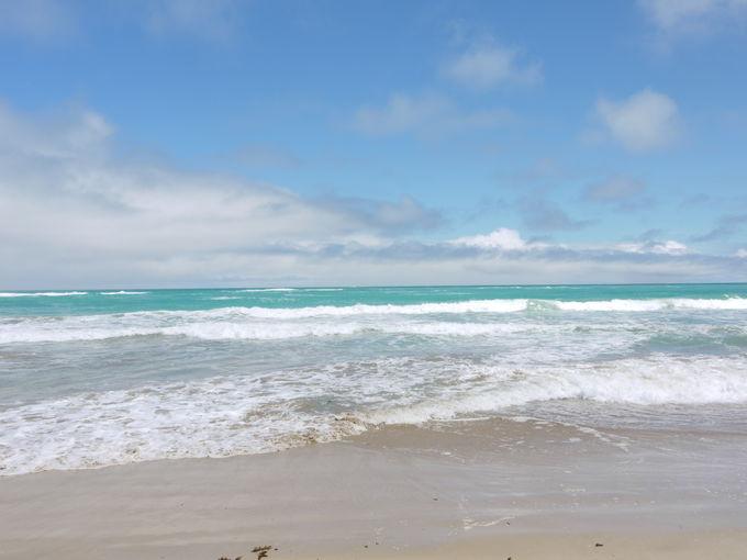 青い海が美しい「トルトゥーガ・ベイビーチ」