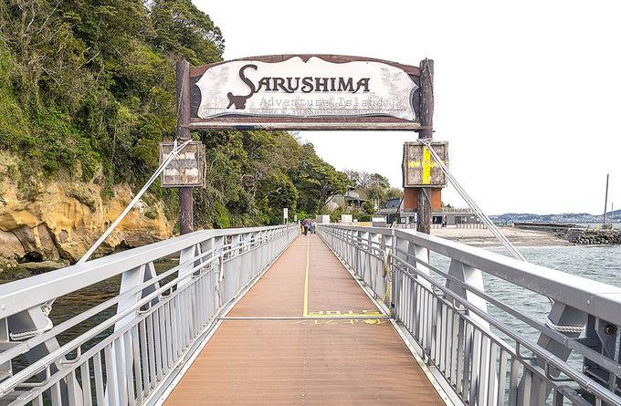 横須賀沖の要塞島「猿島」