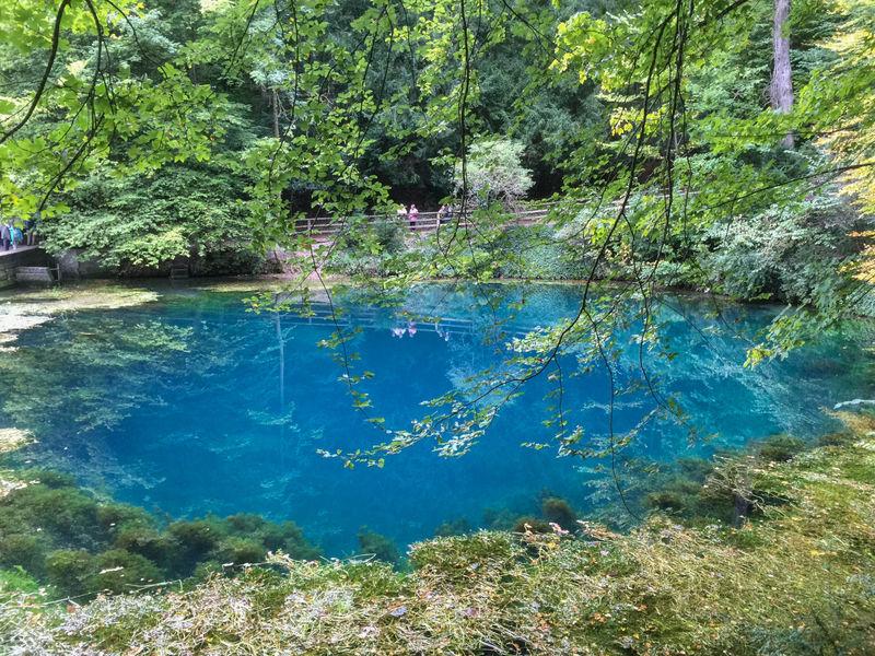 南ドイツ観光!幻想的な青い泉「ブラウトプフ」と周辺の見どころ