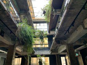 廃墟のようなデザイナーズリノベホテル!台中「SOF HOTEL」