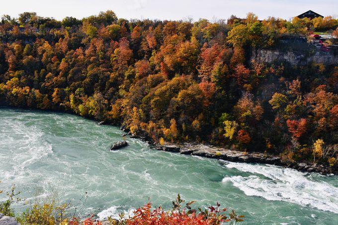心奪われる秋の絶景スポット「ワールプール州立公園」