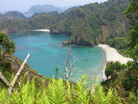 世界自然遺産☆小笠原諸島の島民がおすすめする写真スポットベスト3