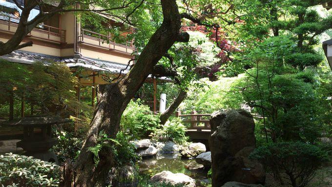 四季折々楽しめる庭園
