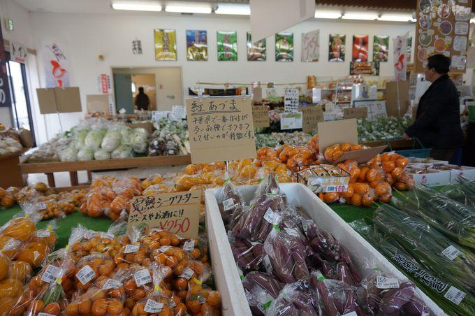 新鮮な朝獲れ『地元産野菜』が買える!