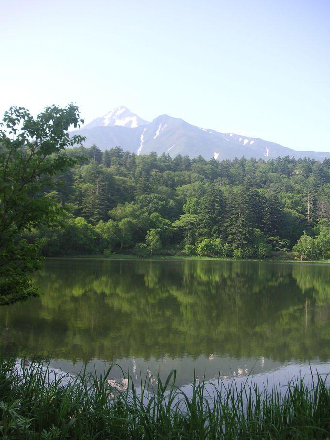 翌日は登った山を眺めるのはいかがですか?