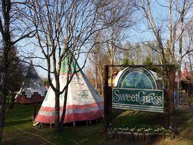 憧れのツリーハウスがココに!北軽井沢スウィートグラスが施設充実で楽しすぎる!