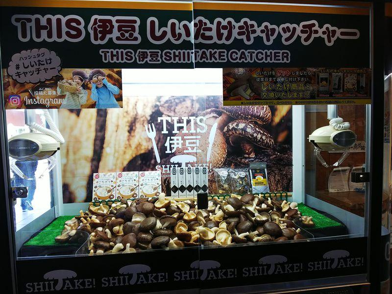 しいたけキャッチャー!?静岡「伊豆村の駅」がユーモアに溢れてる!