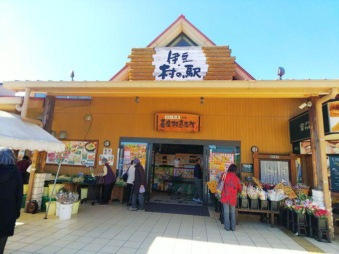 伊豆村の駅はこんなところ!