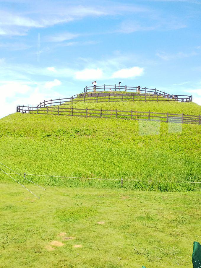 キャンプ場すぐ裏手の丘から素敵な景色を!