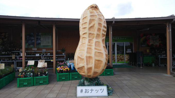どどーんと大きい「ピーナッツ」がお出迎え!