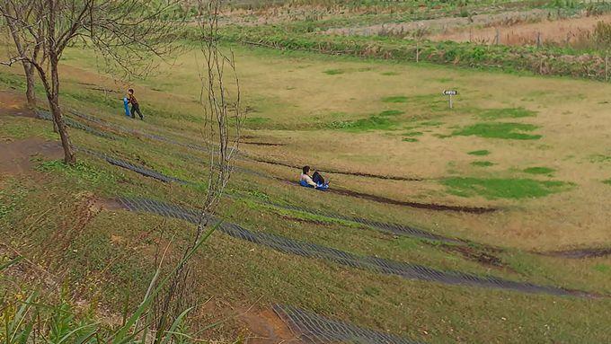 グラススキー場から鯉の釣り堀まで幅広く遊べる!