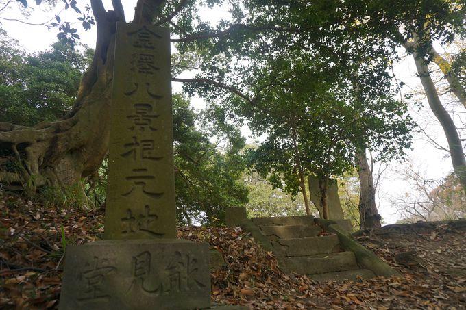初心者や子供連れは金沢自然公園までがおすすめ!