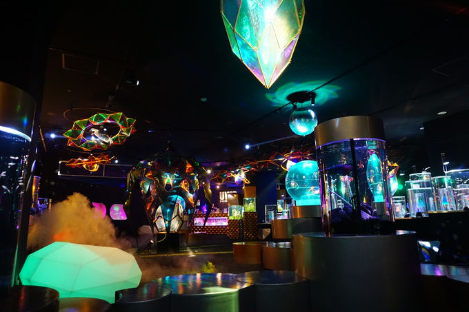 横浜の宇宙水族館!「UNDER WATER SPACE」