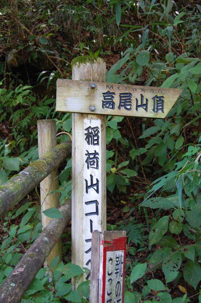 山歩きではなく、登山をしたいなら「稲荷山コース」へ!