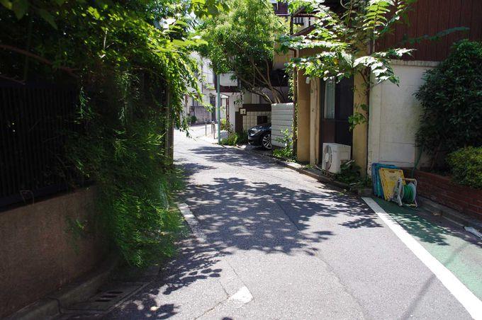 かつてここは、藍染川という小川だった