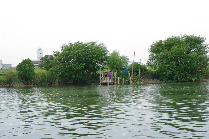 生きている江戸川だから、自然の息吹が体に染み入る