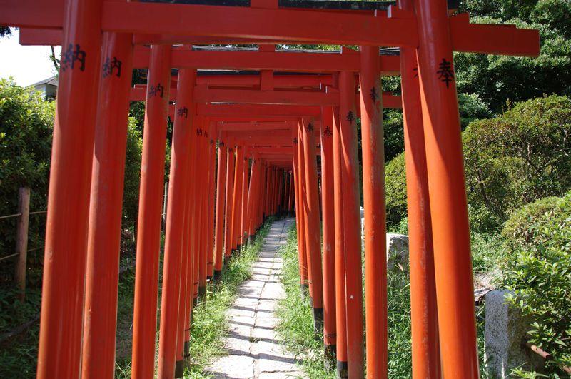 漆塗りの鳥居が美しく連なる古社! 「根津神社」