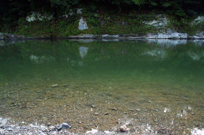 緑色の落ち着いた荒川に癒されて