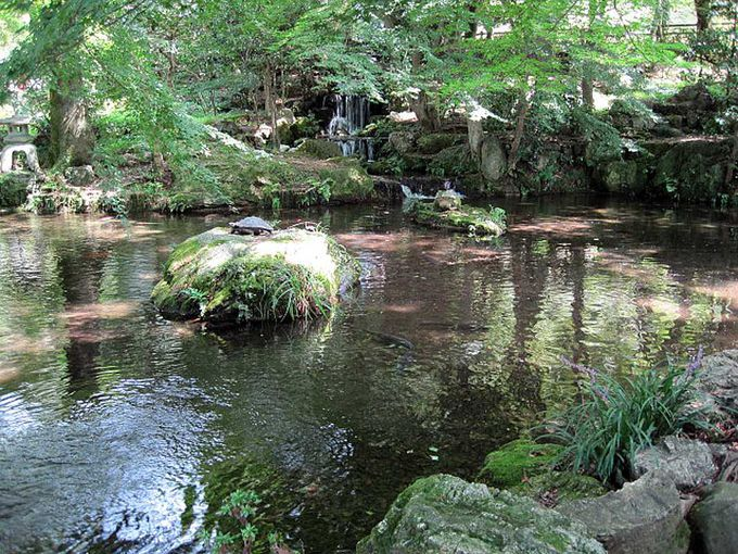 「剛」「静」「雅」の3つの滝と池からなる「信長の庭」
