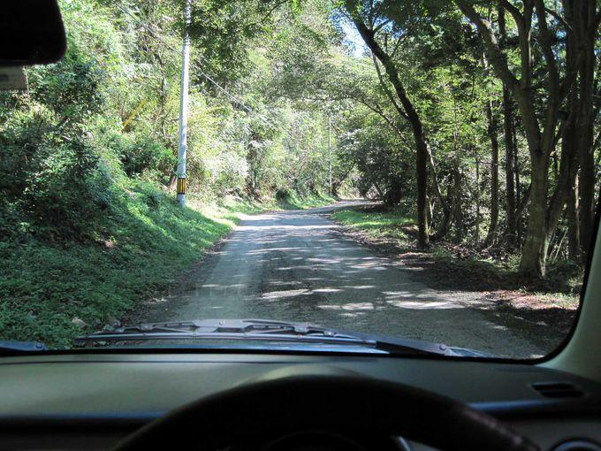くねくね山道を車で登る