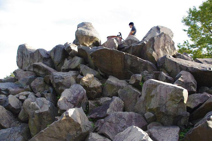 岩登りに挑戦!昆虫のように岩を這い上がる「昆虫山脈」