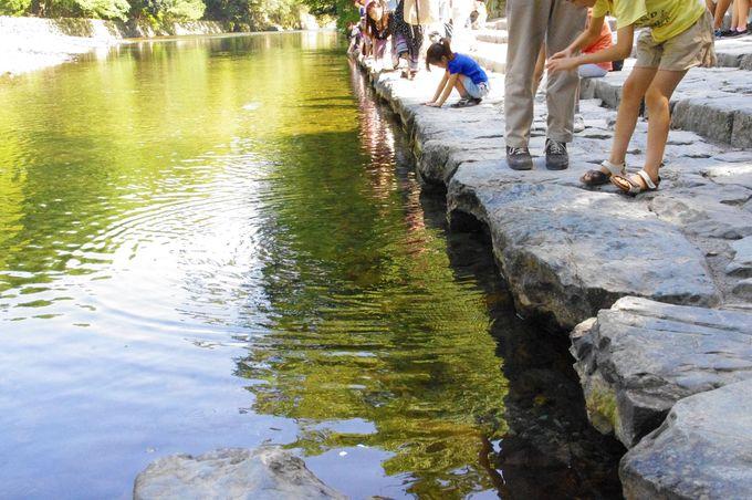 清らかな川の流れでお清め!内宮のパワスポ「五十鈴川御手洗場」
