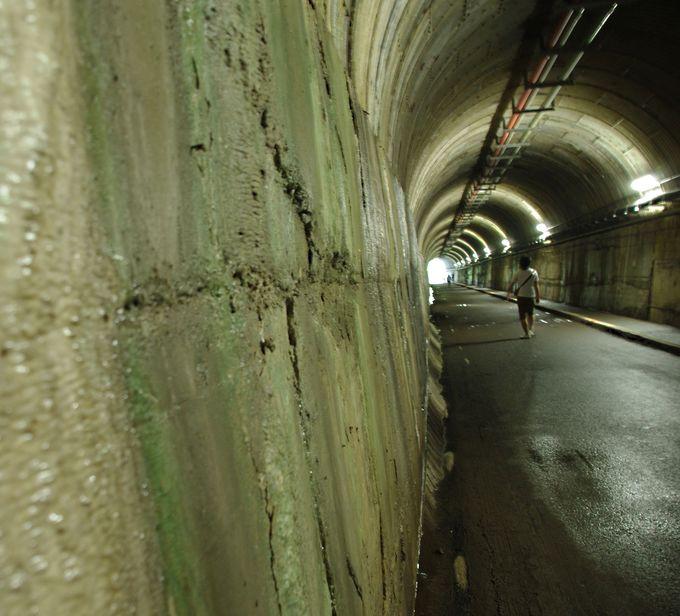 鍾乳洞のような「天子トンネル」をくぐり、夢の吊橋へ!