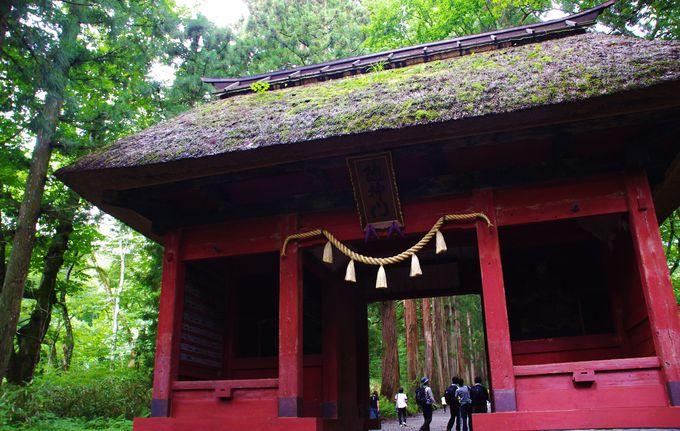 個性豊かな神様たちがいるから、戸隠神社はご利益たくさん