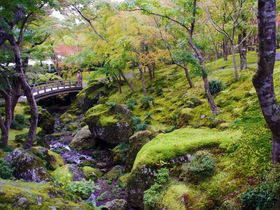 箱根フリーパス 使い方ガイド!団体客と重ならないルートでスイスイ箱根観光