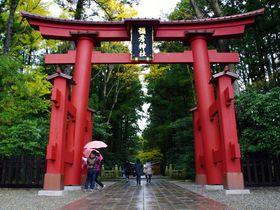 新潟で訪れたいおすすめの神社7選 歴史ある神社を巡ってみよう