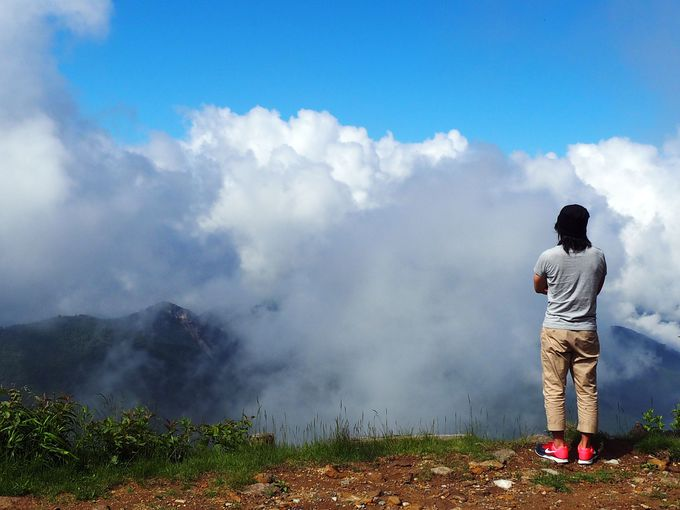 目の前は雲!標高2,307mでしか見られない世界