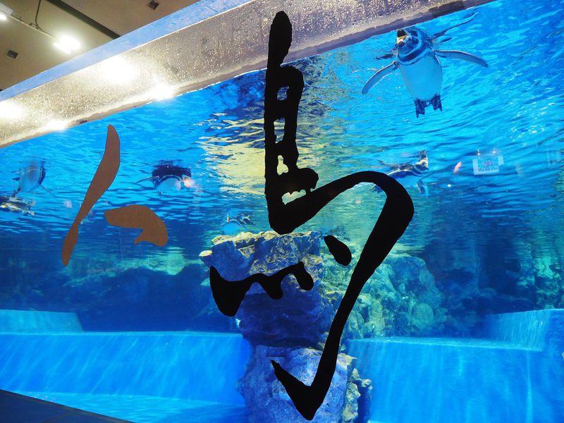 葛飾北斎とコラボ!「すみだ水族館」の江戸を感じる早春イベントが粋で超クール!