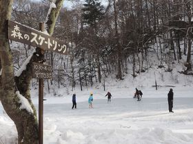 軽井沢で冬遊び!天然氷の癒しスポット「森のスケートリンク」&ぽかぽかスープの旅