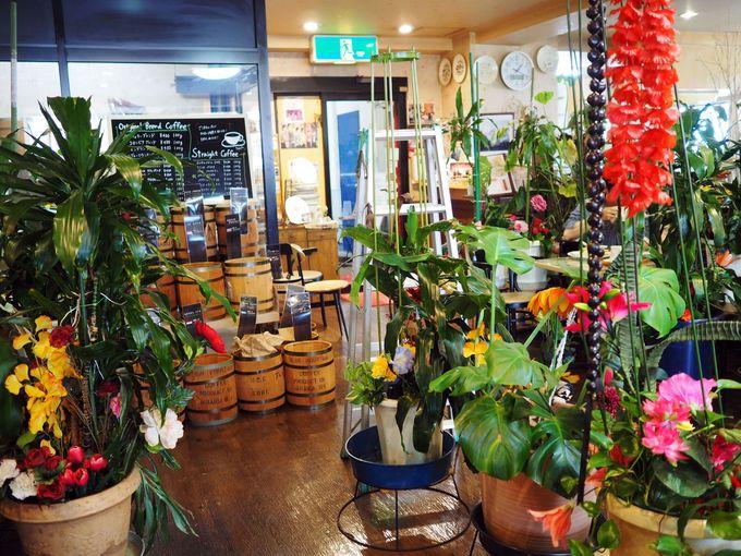 店内はまるでジャングル!植物園のような楽しい「ツヅキ」の店内