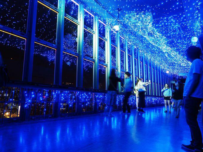 「東京タワー」でイルミネーション