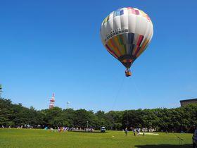 並んでも乗りたい!所沢航空記念公園「ふわり!熱気球体験」がファミリーに大人気
