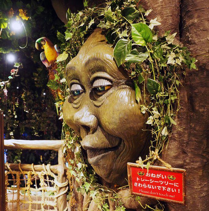 わっ!目を開けておしゃべりする木の妖精にビックリ
