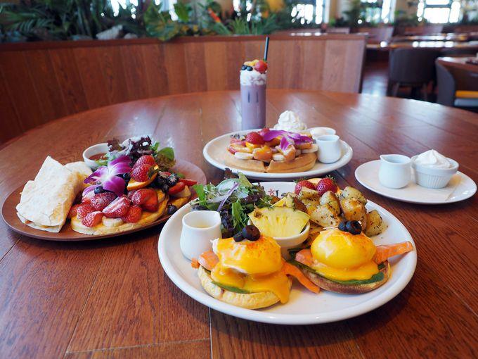 朝食にもベスト!カフェ・カイラ舞浜店おすすめメニュー3品とは