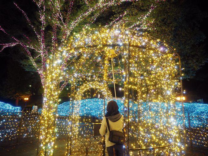 鐘を鳴らすと光が変化する、新感覚イルミネーション