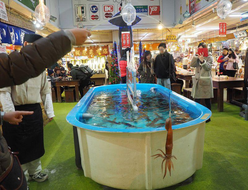 函館朝市のイカした体験型エンターテイメント「活いか釣り」が超面白い!!