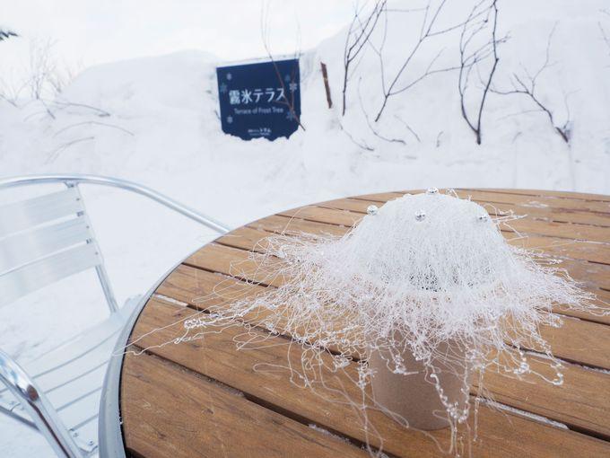 霧氷をイメージして作られた冬季限定 霧氷コーヒー